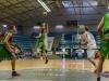 MATCH 1 Ouest Lyonnais Basket vs SOPCC-2637